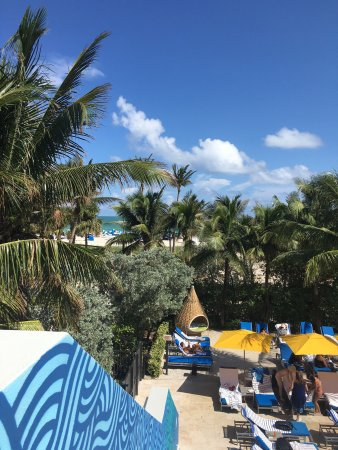 James Royal Palm Hotel Miami Beach Tripadvisor