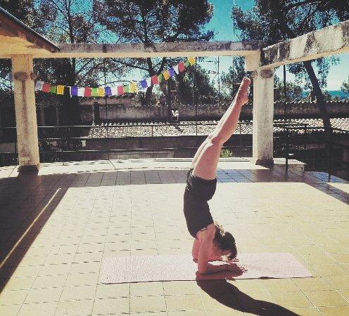 El Mejor Yoga Del Baix Llobregat Opiniones Sobre Yoga Hipiclub Gavà España Comentarios Tripadvisor
