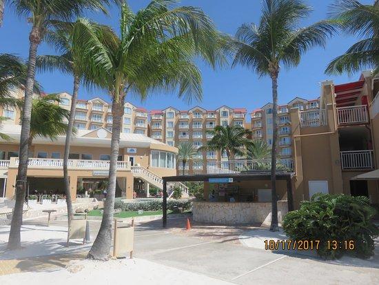 Divi aruba phoenix beach resort updated 2017 prices - Divi beach aruba ...