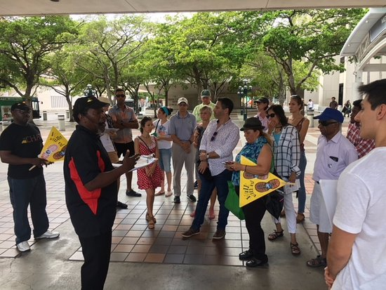 Miami sightseeing tours | miami bus tours | big bus tours.