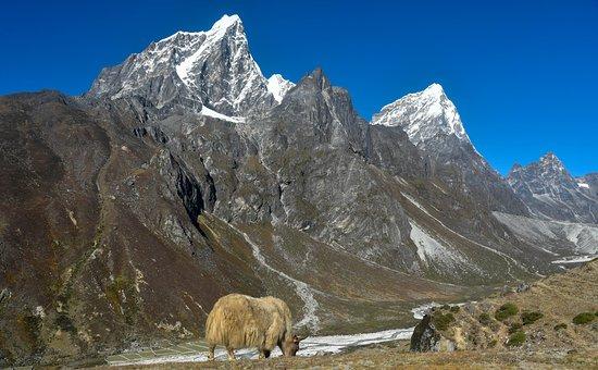 Black Diamond Expedition - Private Day Tours: EBC trek