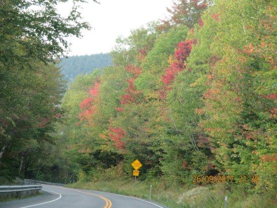 Kancamagus Highway: Just Turning