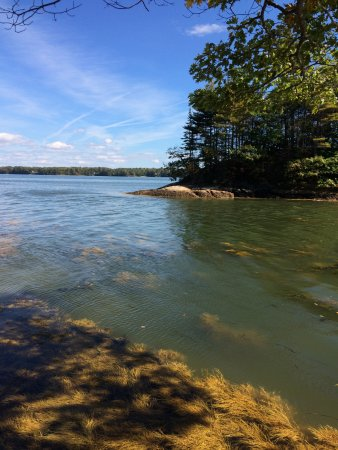 Wolfe's Neck Woods State Park : Wolfe's Neck State Park