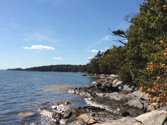 Wolfe's Neck Woods State Park: Wolfe's Neck State Park