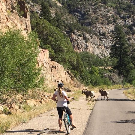 Glenwood Canyon Bike Trail: A birthday gift to my wife from the local universe.