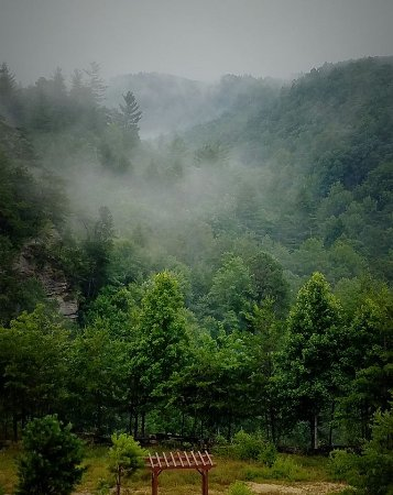 ‪‪Campton‬, ‪Kentucky‬: July 3rd, this was the early morning view from the covered porch outside our patio door.‬