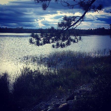 Kejimkujik National Park, Canada: Dram in the sky from Site 11
