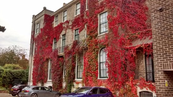 The Grange Hotel: The Car Park at rear in autumn