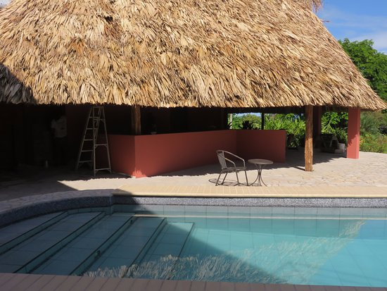 "Punta Gorda, Belice: This is our bar, your bar ""Paddle Bar at Coral House"""