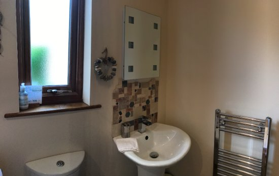 Llanfor, UK: En Suite Shower Room in Caban y Saer