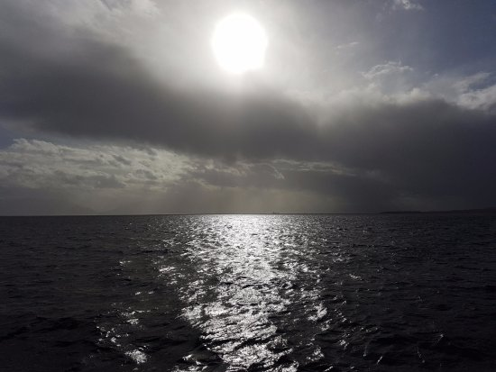 Eagle Wing Whale Watching Tours: horizon from the boat
