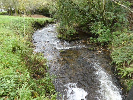 Leitrim, Irlandia: fast flowing stream below waterfall