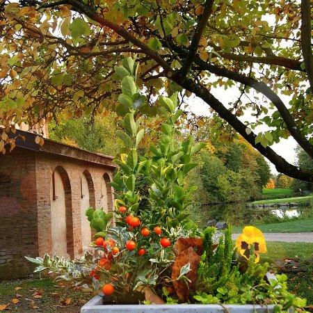 Plobsheim, Frankrig: IMG_20171024_192435_673_large.jpg