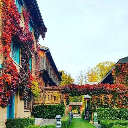 Plobsheim, Frankrig: IMG_20171025_093215_241_large.jpg