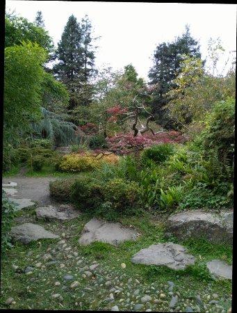 Jardin japonais nantes jardin japonais yorumlar for Jardin japonais nantes