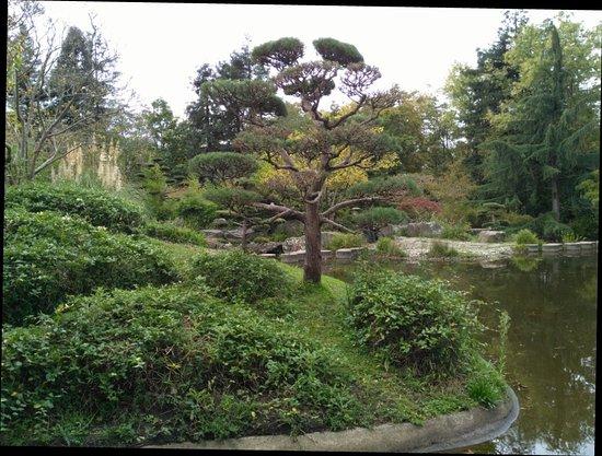Jardin japonais nantes jardin japonais yorumlar tripadvisor for Jardin japonais nantes