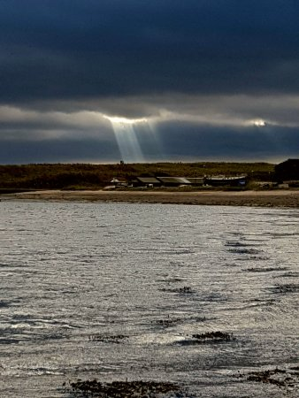 Holy Island, UK: Sunligth over the harbour