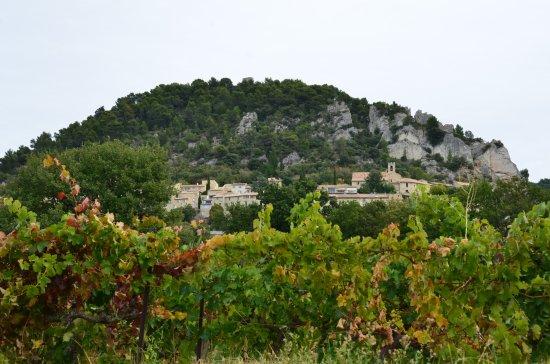Vineyards across the street and Seguret in distance