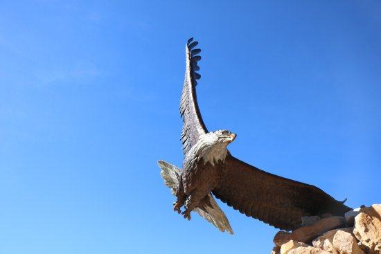 Ridgway, CO : Beautiful and magnificent eagle. This park is worth stopping and visit for awhile. The trails ar