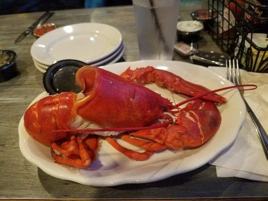 Bristol, RI: Lobster dinner