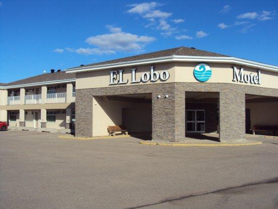 El Lobo Motel