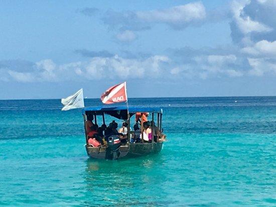 Diving Poseidon: Abfahrt zum Tauchausflug