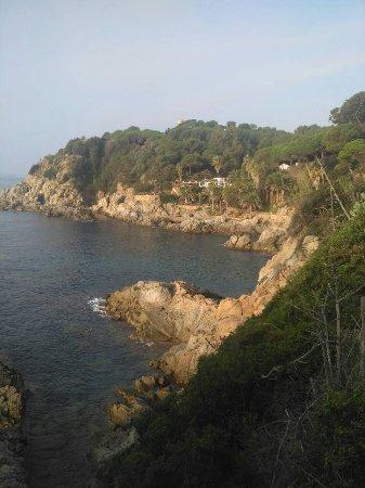 Playa de Lloret: IMG-141d373c3023da26bcebbf85c6e0b56d-V_large.jpg