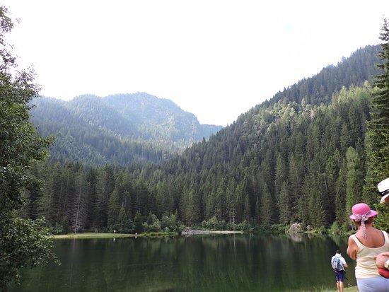 Lago dei Caprioli: panorama del lago