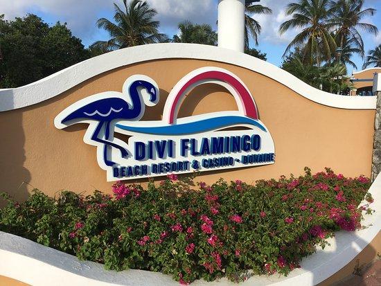 Divi Flamingo Beach Resort and Casino: Entree