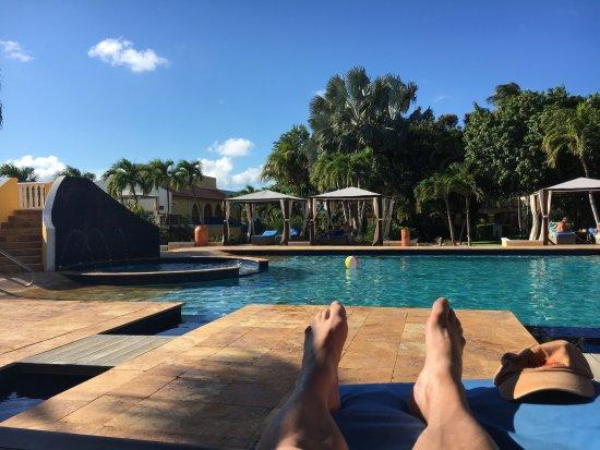 Divi Flamingo Beach Resort and Casino: Grote zwembad