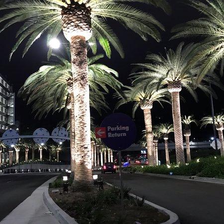 Universal Citywalk Hollywood Los Angeles Ca Reviews Top Tips
