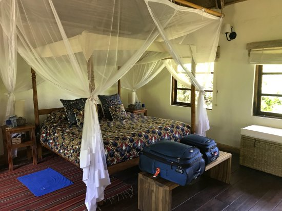 Bwindi Lodge: photo4.jpg