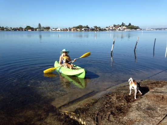 Kayaking Is A Popular Activity Amp Yes We Are Pet Friendly