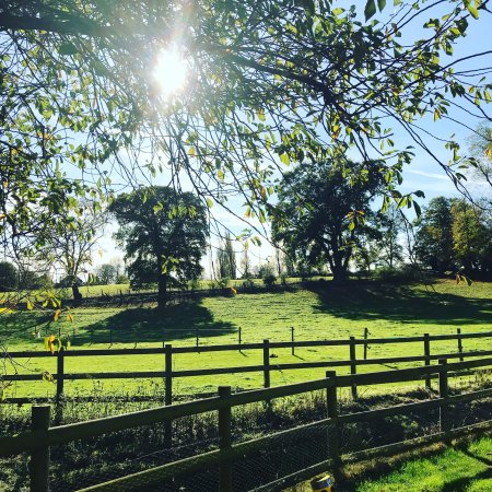 Dedham, UK: Late October sunshine!