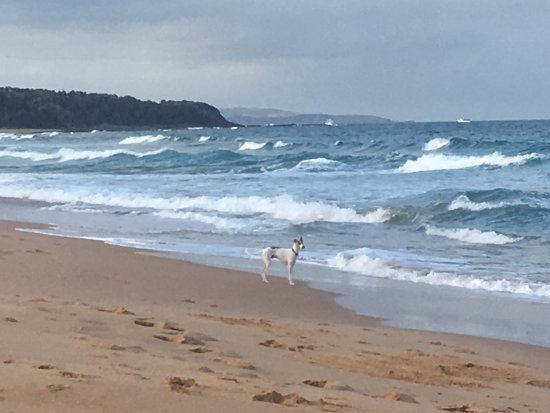 Culburra Beach Photo