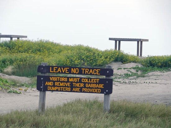 Mustang Island State Park: on the beach