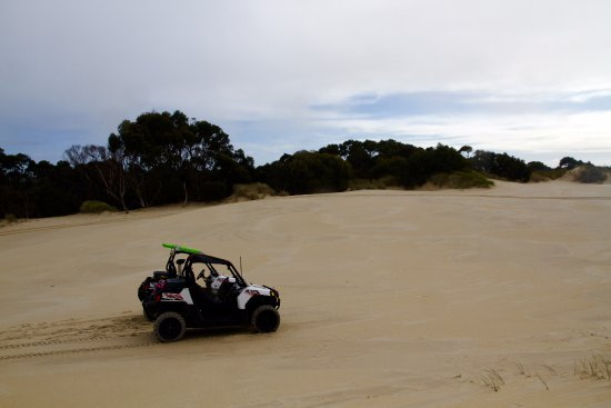 Strahan Village: The Henty sand dunes buggy driving was so much fun!