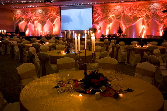 Crowne Plaza Hotel Dublin Airport: Have your special event i.e your wedding in the Redwood Suite