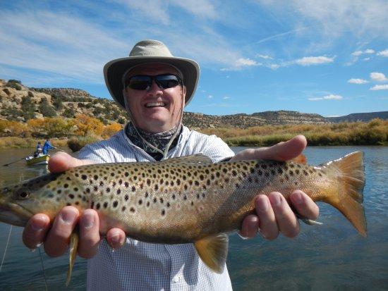 Navajo Dam, Nowy Meksyk: Big Brown