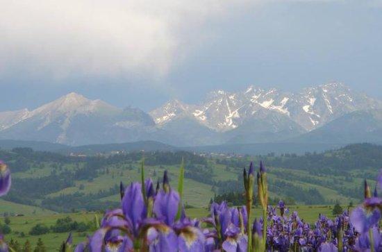 Zakopane and Tatra Mountains Day Trip ...