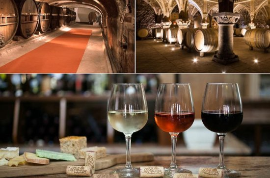 Private Vineyard Tour of Provence...