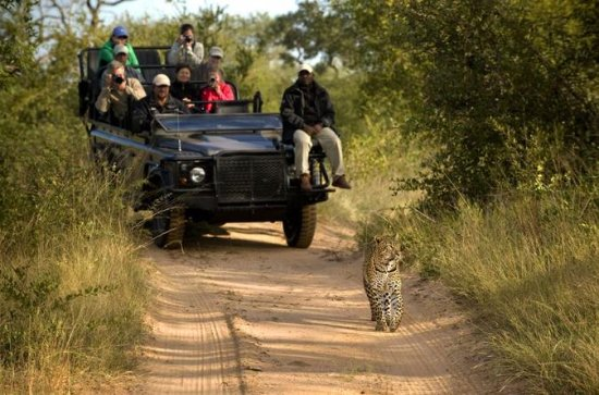 3nights Lion Sands River Lodge - Lion...
