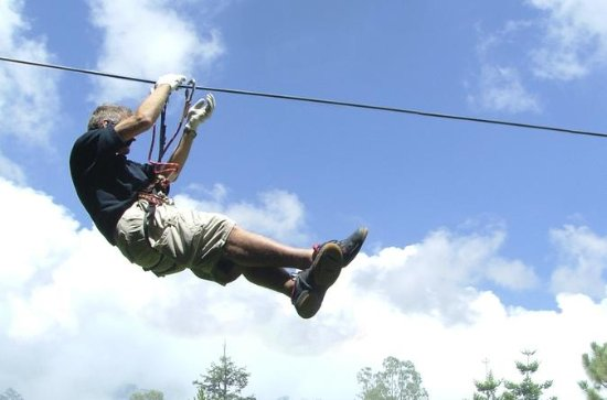 Treetop Full Day Adventure Package
