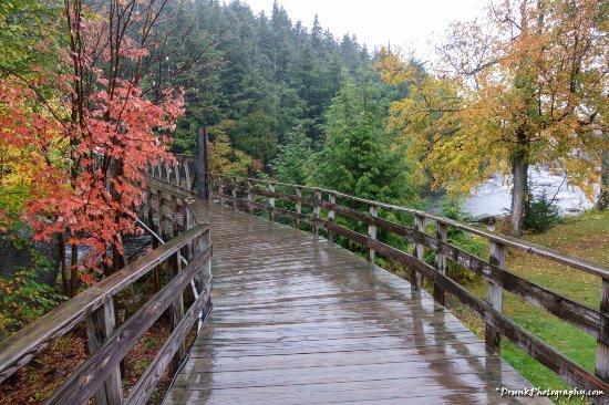 Wilmington, نيويورك: beautiful fall colors coming to peek