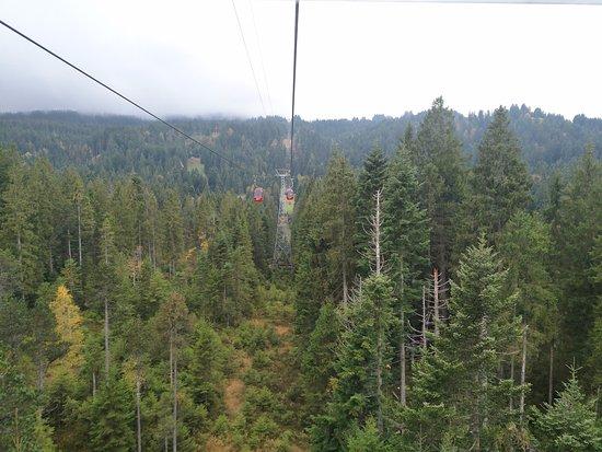 Mount Pilatus: David Papkin View from Cable Car