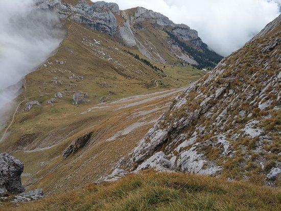 Mount Pilatus: david papkin looking for animals on mountain