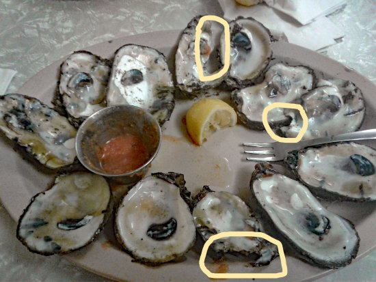 Casamento's Restaurant: the oysters where smashed trying to open them -very poor shucking