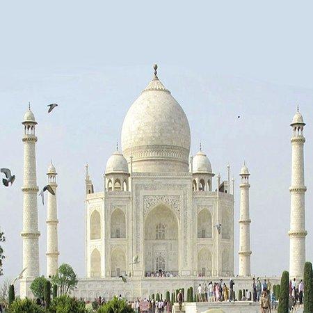 India Arrivals Tours