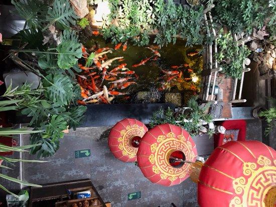 Red Lantern House: photo1.jpg