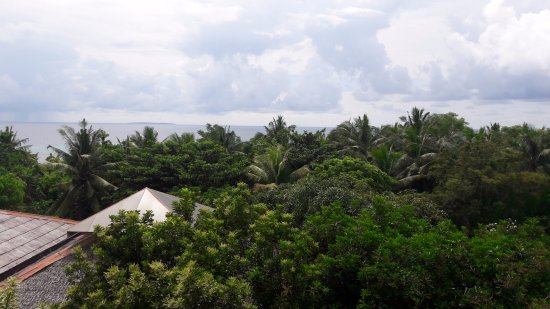 Amarela Resort: Vista desde el comedor